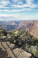 View from Desert View Watchtower, Grand Canyon National Park, Arizona, USA.