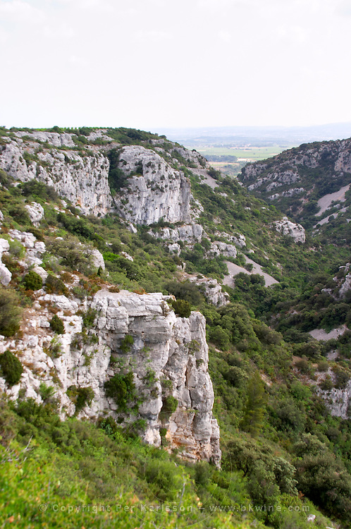 Steep valley with rock formation and garrigue above Montpeyroux. Montpeyroux. Languedoc. Garrigue undergrowth vegetation with bushes and herbs. France. Europe.