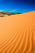 Morning light on dunes, Coral Pink Sand Dunes State Park, Kane County, Utah USA