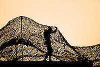 A soldier puts up Camo netting during the Gulf War in Saudi Arabia.
