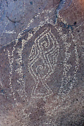 A petroglyph featuring a geometric design of a fish is found on the rock of the Three Rivers Petroglyph Site in New Mexico. The Three Rivers Petroglyph Site, which is under federal protection, contains more than 21,000 glyphs created by the Jornada Mogollon people who lived in the area between 900 and 1400 AD. It is one of the largest petroglyph sites in the American Southwest. The Jornada Mogollon people created the petroglyphs by using stone tools to remove the dark patina on the exterior of the rock.