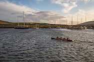 Scullers rowing in Dingle Bay, County Kerry, Ireland