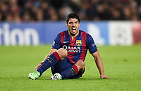 Fotball<br /> UEFA Champions League<br /> Foto: imago/Digitalsport<br /> NORWAY ONLY<br /> <br /> FUSSBALL CHAMPIONS LEAGUE SAISON 2014/2015 Vorrunde FC Barcelona Barca - Paris St. Germain 10.12.2014 Luis Suarez (Mitte, Barca) am Boden