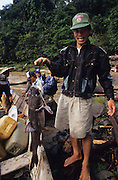 DAYAK FISHING, MALAYSIA. Sarawak, Borneo, South East Asia. Dayak with catfish fished from the  river. Tropical rainforest and one of the world's richest, oldest eco-systems, flora and fauna, under threat from development, logging and deforestation. Home to indigenous Dayak native tribal peoples, farming by slash and burn cultivation, fishing and hunting wild boar. Home to the Penan, traditional nomadic hunter-gatherers, of whom only one thousand survive, eating roots, and hunting wild animals with blowpipes. Animists, Christians, they still practice traditional medicine from herbs and plants. Native people have mounted protests and blockades against logging concessions, many have been arrested and imprisoned.