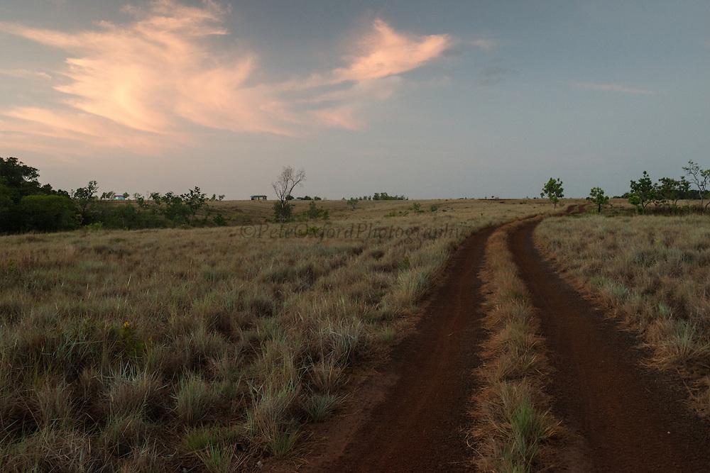 Dirt Road<br /> Savanna <br /> Rupununi<br /> GUYANA<br /> South America