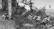World War I 1914-1918:  Austro-Hungarian Uhlans fighting on the south-eastern front using cover of the forest's edge, 1917. Military, Army, Soldier, Weapon, Rifle, Smallarms