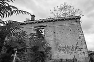 """Trees grow on the top of a shrapnel and bullet scarred building gutted during the Bosnian War in the early 1990s in Mostar, Bosnia and Herzegovina. A message scrawled in English reads, """"You must learn to see thing sthrough the eyes of those who can no longer see."""""""