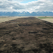 A chunk of Ninepipe National Wildlife Refuge recently burned to remove dried grasses in the month of April, a time when short-eared owls need the grasses for nesting. Mission Valley, Montana