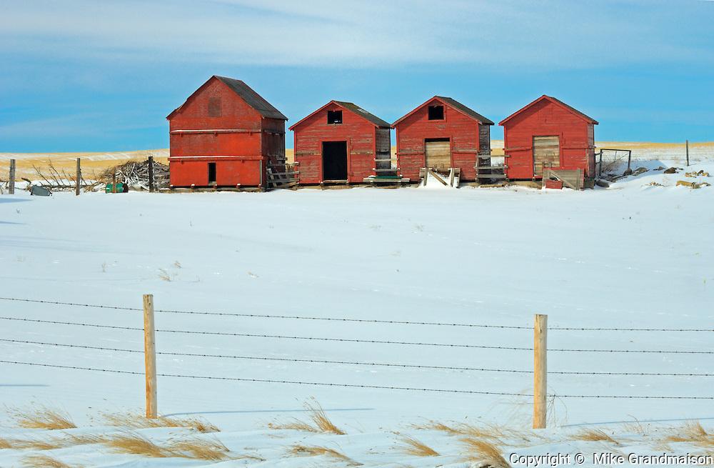 Red wooden graneries in winter<br /> <br /> Alberta<br /> Canada