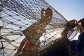 Cham Muslim fishermen of the Mekong