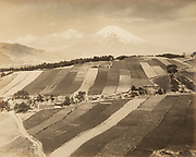 """Okada Koyo<br /> Terraced gardens at (Mitsuya Shinden)<br /> Date: 1940s - mid 1950s<br /> <br /> Description: A close variant of this photo was published in """"Mt. Fuji"""", by Okada Koyo, Hobundo Publishing, Tokyo 1964, plate #36. In the caption it reads:<br /> <br /> It is a clear morning in early Autumn, and the peak of Fuji is covered with the year's first snow. On the nearby slope are gardens and plots where scallion, carrots, radishes, and small Japanese sweet potatoes are growing. The scene is full of the movement and color of life. I took a deep breath of fresh air and opened the shutter. It worked well!""""<br /> <br /> Vintage or near vintage, double weight, gelatin silver print, with smooth semi-matte surface, unsigned.<br /> <br /> Condition: print has overall fading, color shifting and silvering along the edges.<br /> <br /> Size: 10 3/4 in. x 8 5/8 in. (275 mm x 220 mm).<br /> <br /> Price: ¥35,000 JPY<br /> <br /> <br /> <br /> <br /> <br /> <br /> <br /> <br /> <br /> <br /> <br /> <br /> <br /> <br /> <br /> <br /> <br /> <br /> <br /> <br /> <br /> <br /> <br /> <br /> <br /> <br /> <br /> <br /> <br /> <br /> <br /> <br /> <br /> <br /> <br /> <br /> <br /> <br /> <br /> <br /> <br /> <br /> <br /> <br /> <br /> <br /> <br /> <br /> <br /> <br /> <br /> <br /> <br /> <br /> <br /> <br /> <br /> <br /> <br /> <br /> <br /> <br /> <br /> <br /> <br /> <br /> <br /> <br /> <br /> <br /> <br /> <br /> <br /> <br /> <br /> <br /> <br /> <br /> <br /> <br /> <br /> <br /> ."""