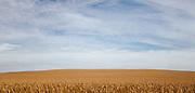 Various farms in Johnson and Iowa County, Iowa. Photographed by editorial photographer Nathan Lindstrom<br /> <br /> Nathan Lindstrom Photography<br /> <br /> © 2015 Nathan Lindstrom