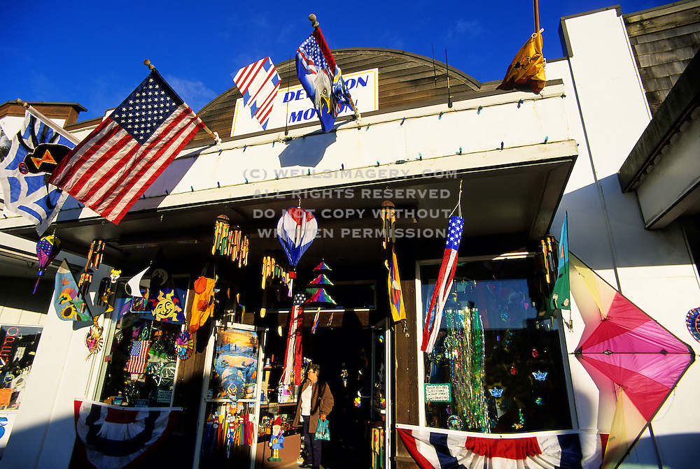 Image of a kite shop in downtown Long Beach, Washington, Pacific Northwest by Andrea Wells