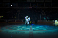 KELOWNA, CANADA - MARCH 7: Rocky Raccoon, the mascot of the Kelowna Rockets stands at centre ice at the start of the game between Kelowna Rockets against the Vancouver Giants  on March 7, 2018 at Prospera Place in Kelowna, British Columbia, Canada.  (Photo by Marissa Baecker/Shoot the Breeze)  *** Local Caption ***