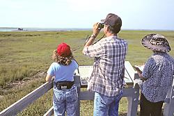 Michael Erwin And Earthwatchers Observing Bird Life