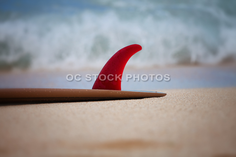 Surfboard Laying on the Beach