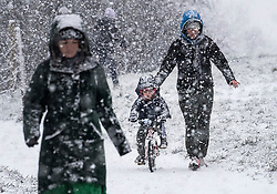 © Licensed to London News Pictures. 24/01/2021. London, UK. Member son the public battle though heavy Snowfall on Hampstead Heath in Hampstead in north London. Parts of the UK continue to suffer from flooding caused by Storm Christoph. Photo credit: Ben Cawthra/LNP