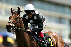 Anapurna redden by jockey Frankie Dettori winning the RaceBets Money Back All Losers Oaks Trial Fillies' Stakes during the The Derby Trial Day at Lingfield Racecourse.