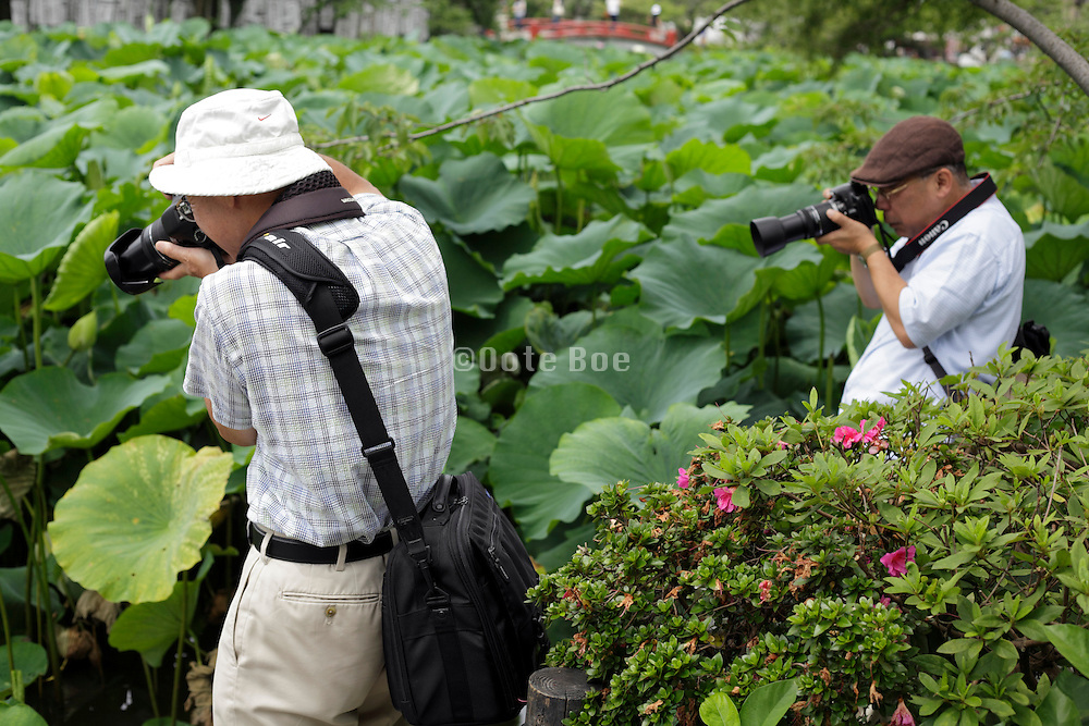 men taking pictures of flowers