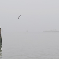 VENICE, ITALY - JANUARY 16:  A vaporetto (waterbus) travels slowly under thick fog on January 16, 2011 in Venice, Italy. Transports in the lagoon has been affected by today's fog.