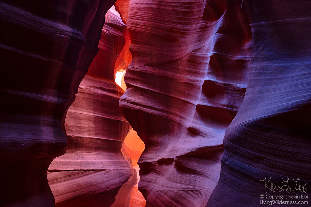 "The walls of an open area of Upper Antelope Canyon on Navajo Nation land near Page, Arizona, take on different colors based on how much direct sunlight they receive. Sections near the slot canyon ceiling appear yellow and gold, while portions in deep shadow are purple. Violent flash floods sculpt the sandstone, leaving undulating, layered walls. The Navajo people call the canyon Tsé bighánílíní dóó Hazdistazí, which means ""the place where water runs through rocks."""