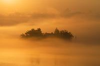 https://Duncan.co/small-island-shrouded-in-fog-at-sunrise