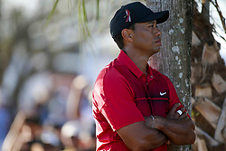February 25, 2018 - Palm Beach Gardens, Florida, U.S. - Tiger Woods is seen while waiting to tee off on the 18th hole during the final round of the 2018 Honda Classic at PGA National Resort and Spa in Palm Beach Gardens, Fla., on Sunday, February 25, 2018. (Credit Image: © Andres Leiva/The Palm Beach Post via ZUMA Wire)