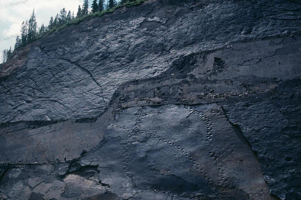 (1 of 2)We were going to take a photograph of Phil Currie rappeling on this vertically faulted cliff and measuring these dinosaur tracks, but the light wasn't right so we returned the next day but the cliff had collapsed.  SEE