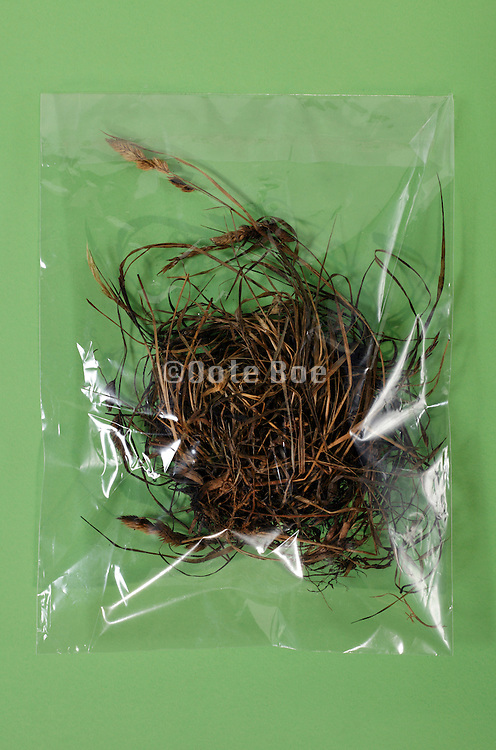 dried up grass and weeds in a clear cellophane envelope