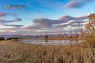 Wetlands pond with waterfowl at sunset in the Lower Valley south of Kalispell, Montana, USA