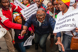 """Lodon, February 21st 2015. Dozens of exiled Zimbabweans gather outside their embassy in London proclaiming Mugabe's last birthday in office. Singing and dancing as they have done every Saturday since 2002, the group spoke with passersby and added yet more names to their petition. PICTURED: """"Mugabe"""" re-enacts his recent fall, made famous for the internet memes it generated."""