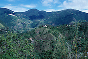 Blue Mountains  - view from Strawberry Hill Jamaica
