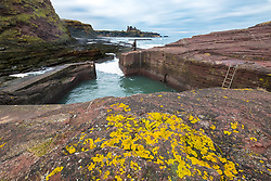 View of small harbour at Seacliff in East Lothian, Scotland, United Kingdom