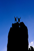 Silhouetted climbers celebrating on the summit of Eichorn Pinnacle, Yosemite National Park, California USA