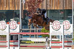 Wauters Louis, BEL, Obama van Ostaayen<br /> Belgian Championship 6 years old horses<br /> SenTower Park - Opglabbeek 2020<br /> © Hippo Foto - Dirk Caremans<br />  13/09/2020
