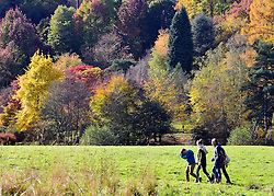 © Licensed to London News Pictures. 30/10/2012. Winkworth, UK A family walk against a backdrop of colourful trees. Autumn Colour at Winkworth Arboretum in Surrey today 30th October 2012. Photo credit : Stephen Simpson/LNP