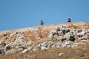 UNIFIL (United Nations Interim Force In Lebanon) soldiers on the Israeli Lebanon border