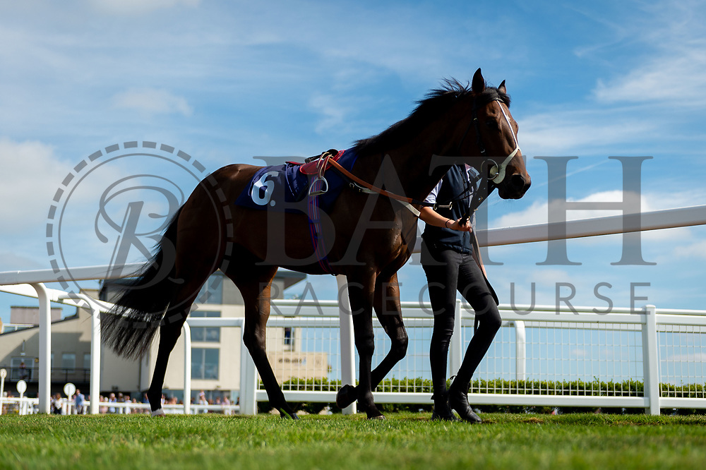 Tilly Tamworth ridden by Franny Norton and trained by Rod Millman in the Visit Valuerater.Co.Uk Nursery Handicap race.  - Ryan Hiscott/JMP - 15/09/2019 - PR - Bath Racecourse - Bath, England - Race Meeting at Bath Racecourse