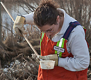 Photo Randy Vanderveen.Grande Prairie, Alberta.11-04-27.Ami Kaut, a city parks worker, checks for mosquito larvae by dipping into the muddy water of sloughs and ditches near the Grande Prairie's northern outskirts as part of the year's mosquito control work. Much of the control work is done in the county in three to five kilometre radius surrounding the city. The flooding in many parts of the Prairies could mean a huge mosquito population in many parts of western Canada, although the Peace Country's infestation currently doesn't look too threatening.