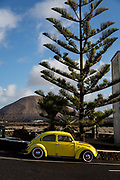A yellow vintage VW Beetle is parked in front of a pine tree and a volcanic peak on 27th November 2020 in Mancha Blanca in Lanzarote, Spain. The island was transformed by huge volcanic eruptions from 1731-36, which give it its unique dramatic landscape..