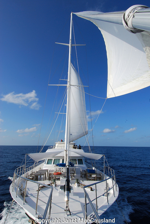 The Agressor Fleet in the Maldives is sailing yacht.