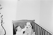"Freddy Hirschman in crib with Bedlington Terrier ""Susie"", Franklin, Michigan."