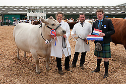 © Licensed to London News Pictures. 27/05/2015. Shepton Mallet, Somerset, UK.  Beef cattle are paraded for judging at the Royal Bath & West Show.  Double winner of the Exhibitor Bred Beef Cattle Championship and Beef Individual Supreme Championship, a Murray Grey breed cow named Ashrose Rita 15th age 7 yrs (with a calf) with Gill Finucane (daughter of owner Wendy Finucane, who is manager of the herd Otter & Co from Carmarthen), Arthur Stanbury, and judge William Mclaren from Scotland.  It's only the second time in 40 years that a Murray Grey breed has won any championship in the UK.  The breed was developed in Australia.  Photo credit : Simon Chapman/LNP