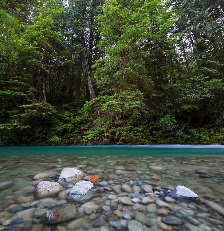 Bacon Creek, Mount Baker-Snoqualmie National Forest, Washington.