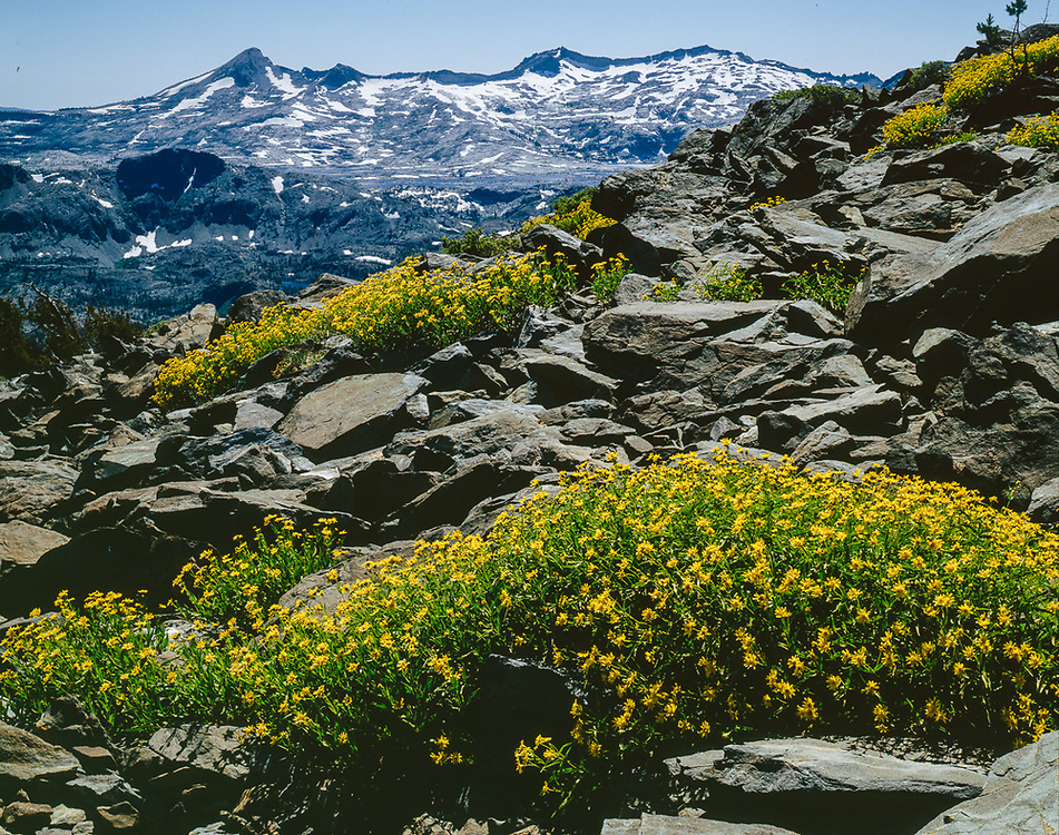 View from Mount Talac, summer, Desolation Wilderness, California, USA