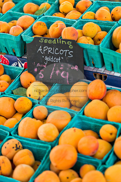 Fresh Goldcot apricots on sale at a farmers market in Wicker Park August 2, 2015 in Chicago, Illinois, USA