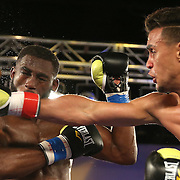 Daniel Rosario (R) punches Alphonso Black with a right cross during a Telemundo Boxeo boxing match at the A La Carte Pavilion on Friday,  March 13, 2015 in Tampa, Florida. Rosario won the bout by TKO.  (AP Photo/Alex Menendez)