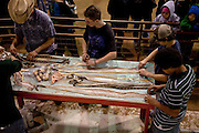 SWEETWATER, TX - MARCH 14: Jaycee volunteer snake handlers process western diamondback rattlesnake skins brought in by hunters during the 51st Annual Sweetwater Texas Rattlesnake Round-Up, March 14, 2009 in Sweetwater, Texas. Approximately 24,000 pounds of rattlesnakes will be collected, milked for venom and the meat served to support charity. (Photo by Richard Ellis)