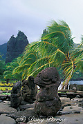 tikis on stone temple on beach, Hatiheu Bay,<br /> Nuku Hiva; Marquesas Islands, French Polynesia<br /> ( South Pacific Ocean )