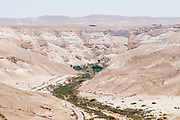 Israel, Negev, Kibbutz Sde Boker looking out towards Ein Ovdat and the Wadi Zin valley